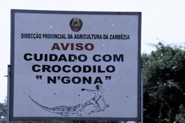 """Placa de aviso na Zambézia """"Cuidado com crocodilo N'Gona"""" Imagem do Jornal @Verdade."""