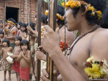 Comunidade Awá de Tiracambu, na fronteira da linha de comboio de Carajás, Brasil. © Fiona Watson/Survival