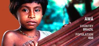 Brasilianische Awá-Bevölkerung: 455. Bild von Survival International.