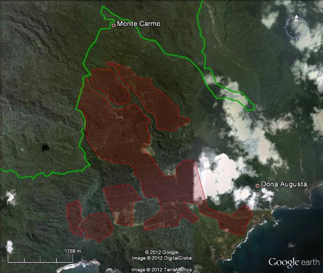 """""""A linha verde assinala o limite com o Parque Natural Obô. Toda a área vermelha é antiga plantação de palmeira ou floresta que eu já vi que foi cortada. Como podem ver, há muita floresta que dantes estava de pé juntamente com as palmeiras da Emolve e agora perdeu-se..."""""""