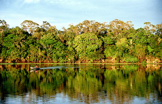 Amazonn, Urubu River. Photo by André Deak on Flickr (Creative Commons BY 2.0)