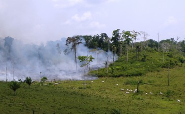 Deforestation in the Amazon. Photo by Bruno Taitson of WWF-Brasil