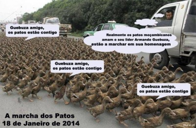 "The image of the ""March of the Ducks"" was widely shared online. It reads: ""Guebuza my friend, ducks are with you"" and ""Mozambican ducks really love their leader Armando Guebuza, they're marching in his honour"". The image is a parody of the reason the Mozambique's President Armando Guebuza has given the press for his economic success: he supposedly became rich by selling ducks."