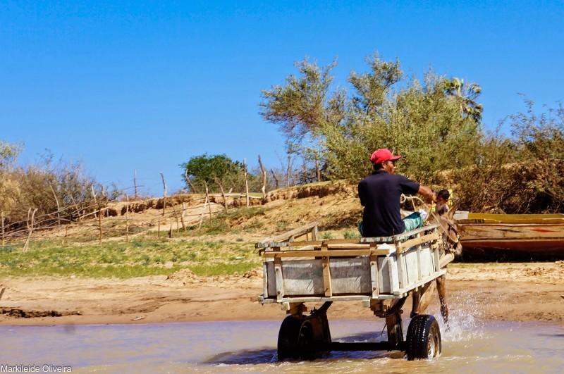Carroça substitui a canoa em Xique-Xique, Bahia. Foto de Markileide Oliveira, publicada com autorização.
