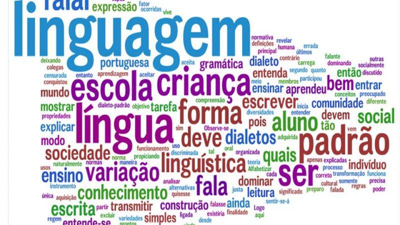 Ensino-da-Língua-Portuguesa