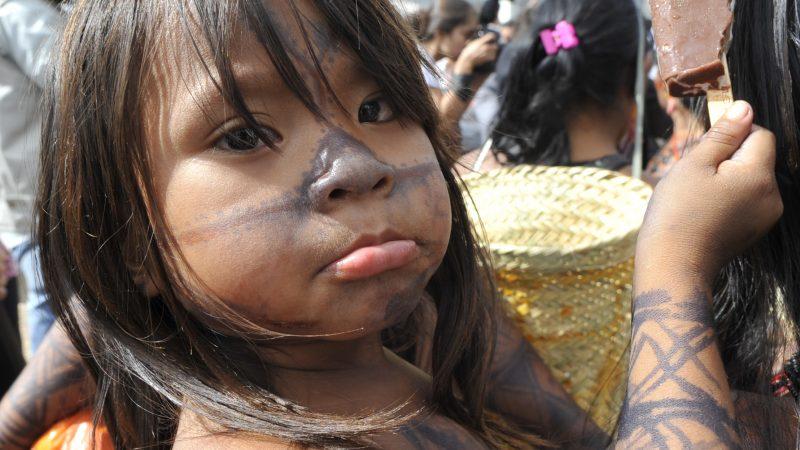 Seguranças impedem a invasão de  índios no Palácio do Planalto