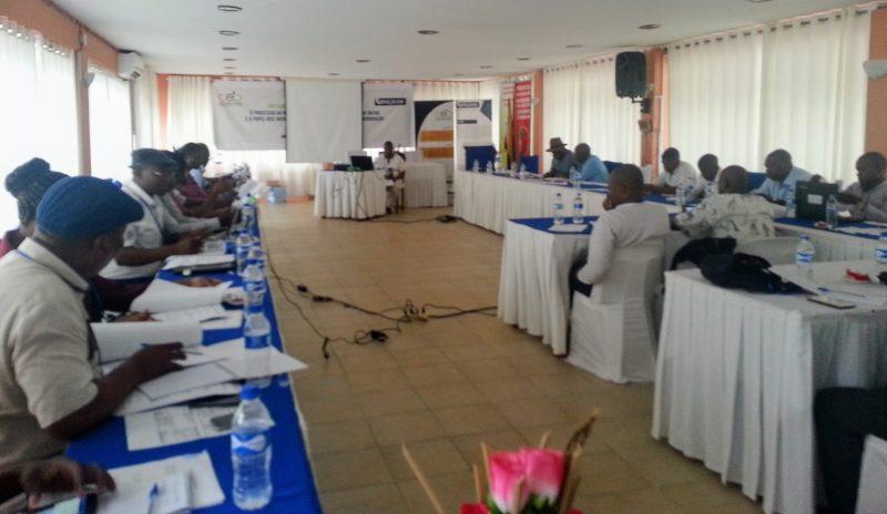 Jornalistas moçambicanos reunidos em Bilene. Foto: Manuel Ribeiro/GV